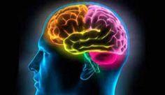 Las claves para cuidar el cerebro durante el verano. http://www.farmaciafrancesa.com