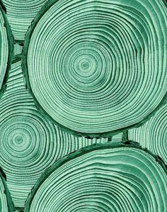 'Faux Bois' Wallpaper by Wallshoppe - Hunter Green - Removable Panel