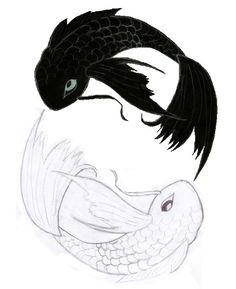 Image detail for -Koi Fish Ying Yang images