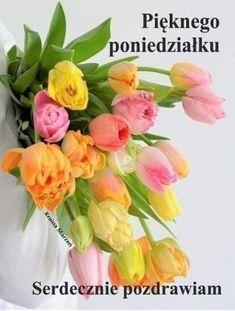 Exotic Flowers, Amazing Flowers, Pretty Flowers, Flora Botanica, Flower Farm, Ikebana, Trees To Plant, Flower Power, Floral Arrangements