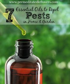 Here are 7 Essential Oils to Repel Pests in Your Home and Garden that can be used in homemade bug sprays, natural pesticides, candles, and diffusers.