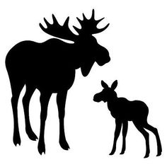 Pack of 3 Moose and Baby Stencils, and Made from 4 Ply Matboard Moose Silhouette, Silhouette Clip Art, Animal Silhouette, Hirsch Illustration, Moose Tattoo, Moose Pictures, Stencils, Wood Burning Patterns, Marianne Design