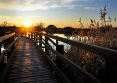 Il tramonto sulla Laguna di Marano
