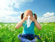 Small amounts of pollen get into your system and build resistance to hay fever.