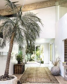 How's this for an entrance... Welcome home! 💛🌴 •• 📷 via #pinterest •• Addicted? Need more inspiration? Visit us in stores & online for all your interior decorating needs! •• Follow the link in our bio, or visit: www.villagestores.com.au