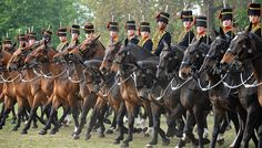 Soldiers and Horses of the Kings Troop Royal Horse Artillery | Flickr - Photo Sharing!