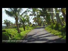 The Beauty Of Ubud Bali Village - http://bali-traveller.com/the-beauty-of-ubud-bali-village/