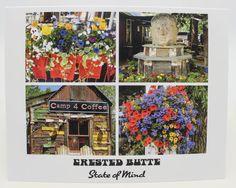 Colorado Summer Bright Flowers  Crested by Nancy Yuskaitis ~ IslandMtnCottageLife