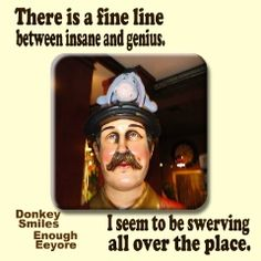There is a fine line between insane and genius...