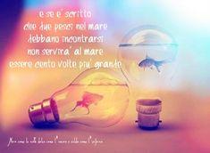 Nero come la notte dolce come l'amore caldo come l'inferno: E se è scritto che due pesci nel mare debbano inco...