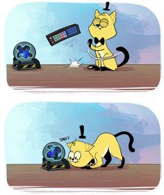 Thank you blanchin' MoringMark bot Gravity Falls Funny, Gravity Falls Bill Cipher, Gravity Falls Comics, Fall Memes, Billdip, Funny Memes, Memes Humor, Hilarious, Bad Cats