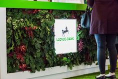 Lloyds Bank – Tea Garden