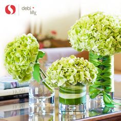 Hydrangeas are so happy! Especially as a dramatic trio vase collection on your table. Green #Hydrangea is Debi Lilly's favorite as they dry beautifully. Stylist Tricks: Tip one stem asymmetrically for a European trend. Submerge Ti Leaf inside your vase for a unique look. Or, corset satin ribbon on the outside for a chic statement. #DebiLillyDesign #Safeway