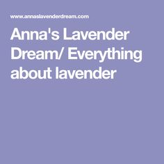 Anna's Lavender Dream/ Everything about lavender