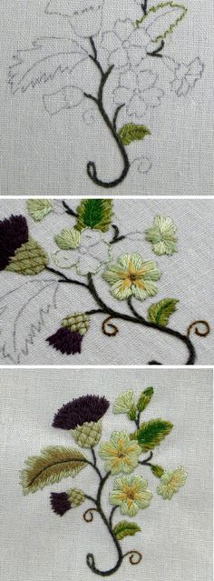 1 Stems-stem stitch, 2 Leaves outlined in split back stitch. Lower bright green leaf- satin stitch over split back stitch edging. Thistle–straight stitches, in a fan pattern until the flower head 'looked right'. Just the one shade suggested in instructions is too dense. Needs other colour or shade added. Primroses are too 'green'–colour looked more yellow when chosen. Thistle flowers–straight stitches in fan pattern 'looked right'. trellis stitch on thistles. See page-larger pics, details...