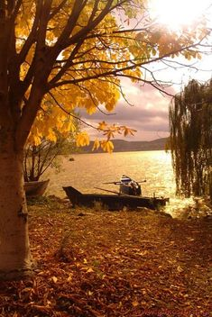 lakeside in autumn