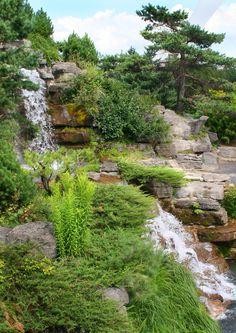 Montreal Botanical Garden by Diane