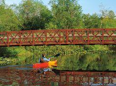 Kayak or Canoe at Mercer Slough Nature Park