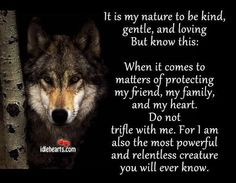 What Does Your Spirit Animal Say About You Wolf Wolf