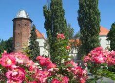 Kozmin, Poland ♥