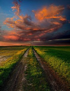 ✯ The Roads We Take by Phil Koch