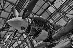 All sizes | Smiling Spitfire | Flickr - Photo Sharing!
