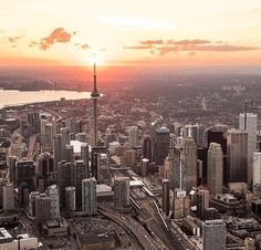 Toronto Skyline, Downtown Toronto, Canada Toronto City, Travel Around The World, Around The Worlds, Moving To Canada, Aerial View, Beautiful Landscapes, Nature Photography