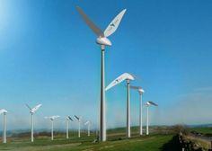 Tunuslu şirket Tyer Wind, geleneksel rüzgar türbinlerine alternatif olabilecek bir türbin geliştirdi. Tasarlanan sıra dışı türbinde ise sinek kuşunun kanat hareketleri taklit edildi. Havada asılı kalıp, kanatlarını uzun süre, çok hızlı çırpabilen sinek kuşları örnek alınarak tasarlanan türbinle ilgili detaylar yazımızda.