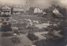 Coopersdale, PA 1918