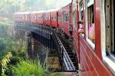 Full-Day Private Rail Tour from Colombo to Kandy This tour is ideal for anyone who wants to experience the countryside of Sri Lanka by train, along with sightseeing in the city of Kandy. This bustling hill-country capital is the natural gateway to a lush central region of tea plantations, gurgling streams and stirring Sri Lankan history.6:00am: Pick up from your hotel in Colombo or Mount Lavinia by tuk tuk and transfer to Colombo Railway station for a 3-hour scenic train ride ...
