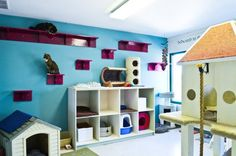 'Cat room.' Love the kitty litter bins in the 'dog house' idea!                                                                                                                                                     More