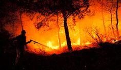 R a g news noticias.com: EUA: forte incêndio devasta florestas no estado do Idaho noticias do Brasil e do mundo