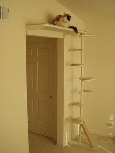 Pratique si le chat veut se cacher s'il vient des intrus!