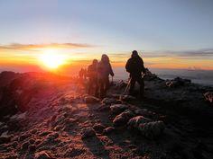 { climbing Kilimanjaro }
