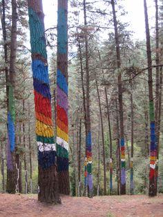 Bosque Pintado de Oma,Vizcaya Obra del artista local Agustín Ibarrola