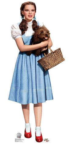 Image result for dorothy wizard of oz