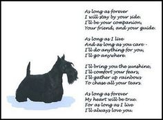 "Beautiful Scottish Terrier Print ""as Long as Forever"" Poem Scotty Scottie New 