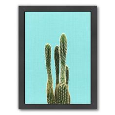 Cactus on Blue Framed Photographic Print