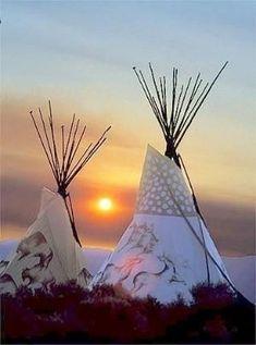 Beautiful Tipis at sunrise. Native American Teepee, Native American Wisdom, Native American Pictures, Native American Artwork, Native American Beauty, American Indian Art, Native American History, Native American Indians, Native Indian