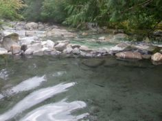 Sloquet Hot Springs, British Columbia. Natural, uncontrolled hot spring