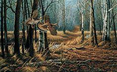 Old Logger's Trail-Ruffed Grouse ~~ Terry Redlin Wildlife Paintings, Wildlife Art, Grouse Hunting, Hunting Art, Hunting Stuff, Hunting Dogs, Terry Redlin, Game Birds, Country Art