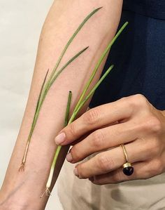 """Green onion tattoo (in Russian """"лук"""" [luk]) in honor of son named Luka. Not usual, delicate and symbolic tattoo. Food Tattoos, Life Tattoos, Body Art Tattoos, Sleeve Tattoos, Tatoos, Koch Tattoo, Tattoo On, Cooking Tattoo, Essen Tattoos"""