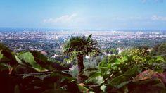 Livorno... Quanto è nello coccolarti dall'alto.  #livorno #toscana #tuscany #tuscanypeople. #italy #italia #volgolivorno #volgotoscana #volgoitalia #igersoftheday #igers #igerslivorno #igerstoscana #igersitalia #instalike #instalife #instamoment #instamood #l4l #likeforlike #picture #fotografiitaliani #fotografi_italiani