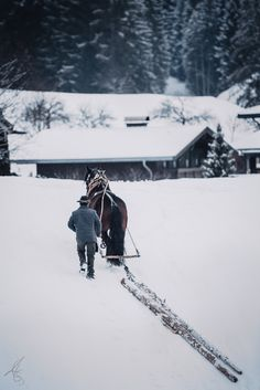 To appreciate the beauty of a snowflake, it is necessary to stand in the cold Appreciation, Horses, Cold, Beauty, Landscapes, Mountains, Snow, People, Pictures
