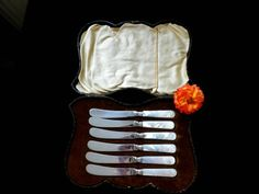 Mother of pearl butter knives boxed set of 6 silver by Taingtiques