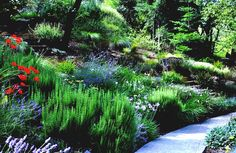 Heavenly Landscaping Ideas Front Yard Plan  Backyard Hill