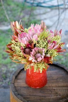 design purple and red flowers in red vase Proteas are beautiful flowers that is indigenous to many regions in South Africa. They come in all shapes, sizes and colours. This bouquet is a mix of proteas and fynbos. Plants With Pink Flowers, Winter Flowers, Flora Flowers, Red Vases, White Vases, Claude Monet, Garden Design Pictures, Edible Garden, Flower Delivery