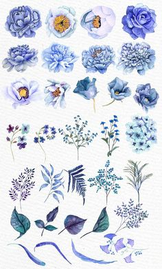 Blue flowers clipart: WATERCOLOR CLIPART Floral | Etsy