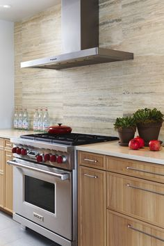 contemporary wood kitchen cabinets, mod pulls