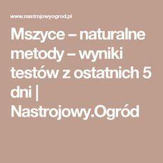 Mszyce – naturalne metody – wyniki testów z ostatnich 5 dni | Nastrojowy.Ogród